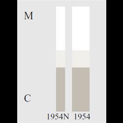 STRISCE SOFLEX 3M 1954